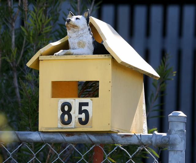 Letterboxes by Bert Knottenbeld