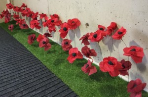 ANZAC poppy display in the Library