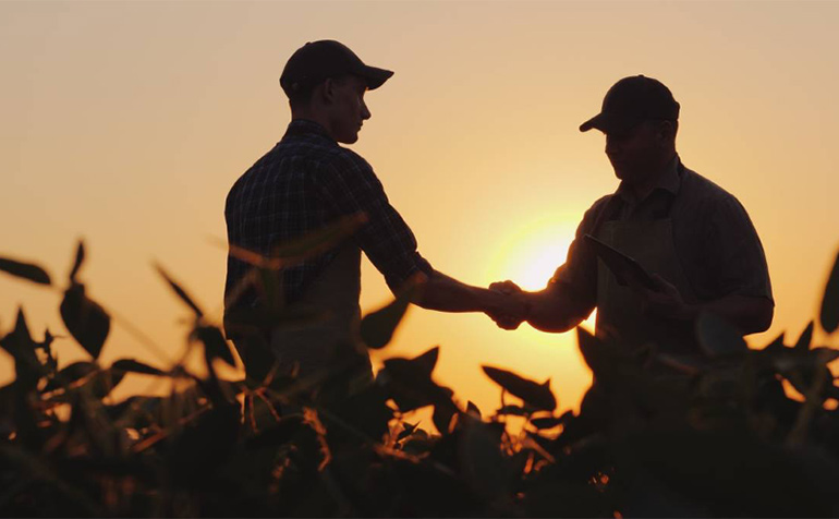 Farmers in crop field silhouetted against a sunset sky.